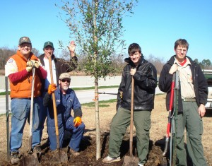 Scouts_liveoakplanting